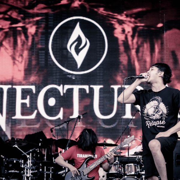 HELLPRINT_NECTURA-UNITED_DAY_V-00020